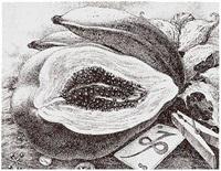 aguamor de candiafuertes iii. by jose ramon alejandro