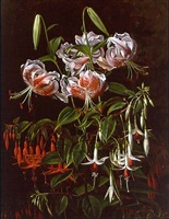 rubrum lilies and fuchsias by johan laurentz jensen