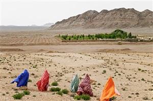 chadornama - to the oasis by haleh anvari