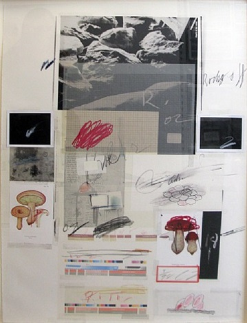 natural history part i no. x - mushrooms by cy twombly