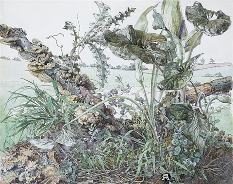 verdure and decay by anna airy