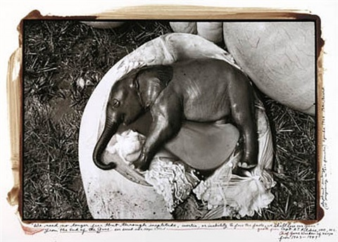 ele embryo, uganda, but past who can recall or undo... by peter beard