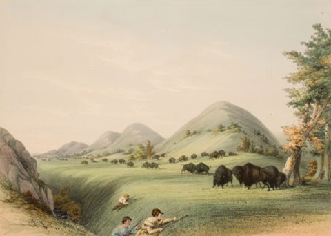 north american indian portfolio buffalo hunt approaching in a ravine plate 11 by george catlin