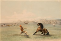 north american indian portfolio, catching the wild horse (plate 4) by george catlin