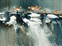antelope ridge by morten e. solberg