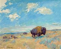 buffalo by frank b. hoffman