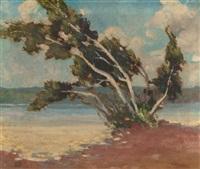 the birches by marjorie de krafft burton