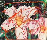 elbow lake and new york says it (two works); 1983 by james rosenquist