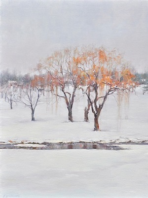 winter reflections by karen blackwood