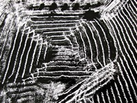 on being aware of nature, 1980/90's by mario giacomelli