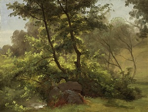 unterholz an einem bachlauf, dresden /<br>underbrush by a stream, dresden by christian friedrich gille