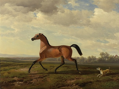 araber vollblut vor schloss blutenburg <br> an arab thoroughbred at schloss blutenburg by albrecht adam
