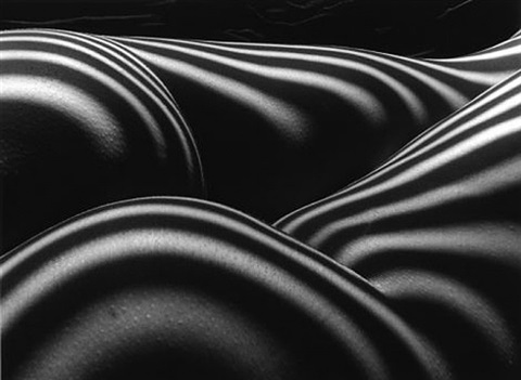 zebra nude i by lucien clergue
