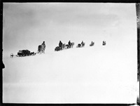 s93 ponies on the march, great ice barrier, 2 dec 1911 by robert falcon scott