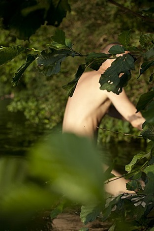 anders behind leaves by wolfgang tillmans