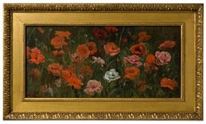 poppy field by elizabeth gowdy baker