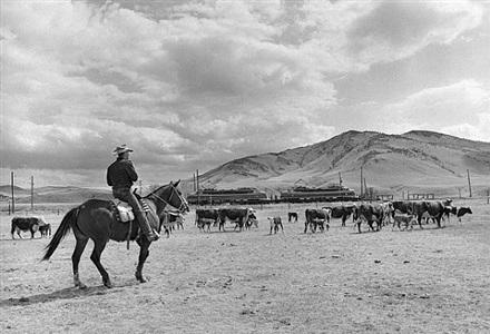 cmsp&p cowboy & lil joes at sappington ranch, mt by richard steinheimer