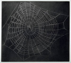 untitled (spider web) by vija celmins