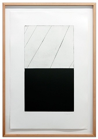adriatics (a) by brice marden