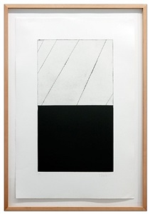 brice marden prints 1973 - 2010 by brice marden