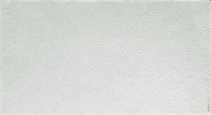 fingerprints-2007.6-2 by zhang yu