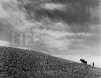 sharecropper plowing a field with pair of horses by margaret bourke-white