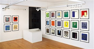 installation view by patrick caulfield