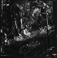 bonze meditation, phom penh, cambodge, 1953 by raymond cauchetier