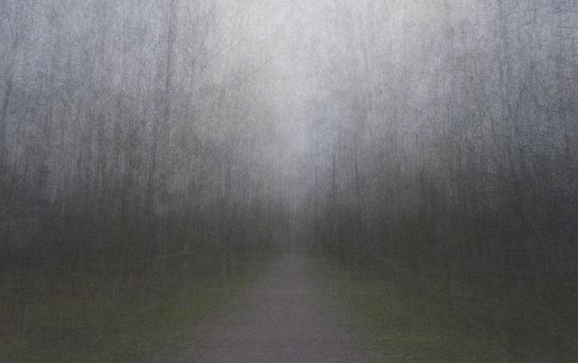 path 19 by eeva karhu