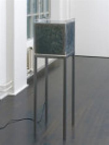 organic matter by luka fineisen
