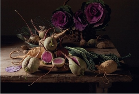 watermelon radishes, 2009 by paulette tavormina