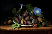 figs and morning glories, d'après giovanna garzoni, 2010 by paulette tavormina