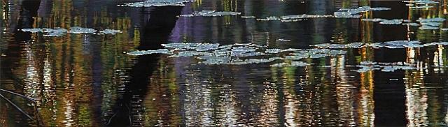 immersion by adrian deckbar