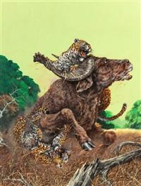 tiger attack, safari magazine, february by douglas allen