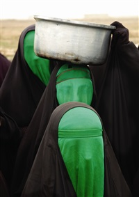 green women no. 3 by babak kazemi
