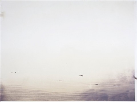 salton sea, d2 by matthew brandt