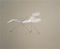 little wings by susumu shingu