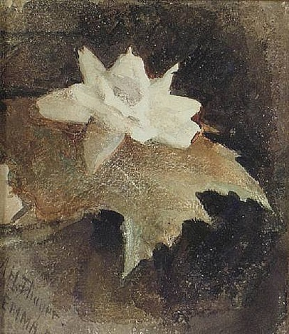 waterlily by abbott handerson thayer