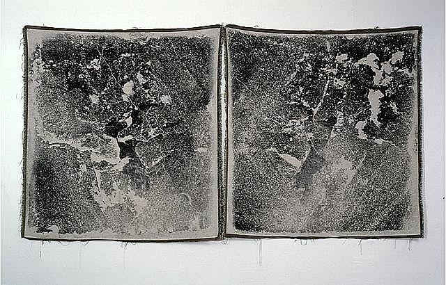 untitled split by paul sietsema