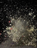 blow up: untitled 7 by ori gersht