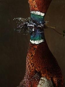 falling bird: untitled 5 by ori gersht