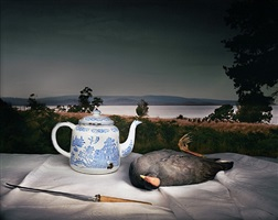 dusky moorhen with chinese teapot by marian drew