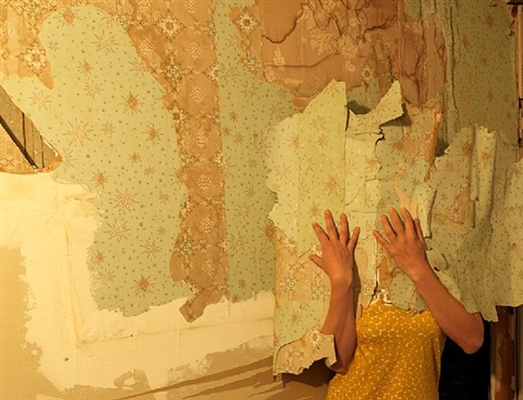 wall paper by lee materazzi
