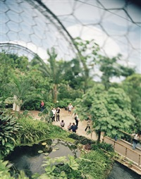 eden project by alex hill