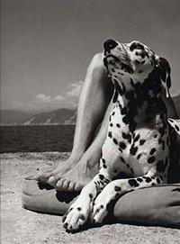 herr und hund, portofino by herbert list