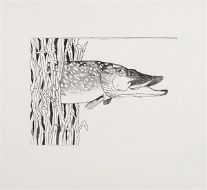 pond life (pike) by bill woodrow
