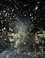 blow up: untitled 8 by ori gersht