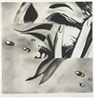 zone by james rosenquist
