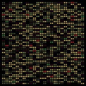 gene expression by melitta moschik