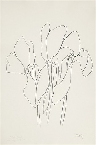 cyclamen v by ellsworth kelly